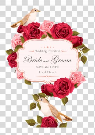 Wedding Invitation Rose Euclidean Vector - Rose Painted Birds Vector PNG