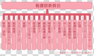 Pink M Health Product Beauty.m - Health PNG