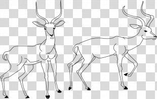 Reindeer Antelope Drawing Line Art Clip Art - Reindeer PNG
