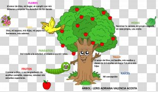 Tree Of Life Web Project Tree Of Life Web Project Tree Of Life Web Project - Tree PNG