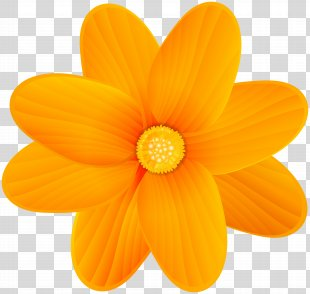Orange Blossom Flower Clip Art - Orange Flower Clip Art Image PNG