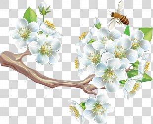 Spring Flower Adobe Acrobat Clip Art - Spring PNG
