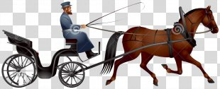 Horse-drawn Vehicle Carriage Horse And Buggy Driving - Horse PNG