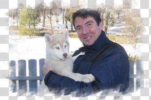 Siberian Husky Sakhalin Husky Canadian Eskimo Dog West Siberian Laika East Siberian Laika - Siberian Husky PNG