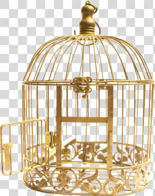 Cell Bird Cage Download - Jail PNG