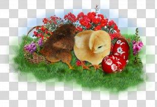 Easter Bunny Easter Postcard Easter Basket Clip Art - Easter PNG