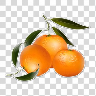 Orange Juice Mandarin Orange Clip Art - Orange PNG