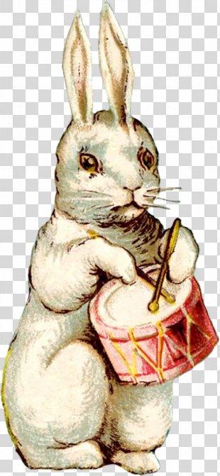 Easter Bunny Easter Postcard Rabbit Easter Egg - Easter PNG