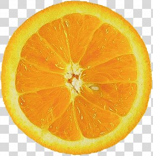 Orange Juice Food Orange Slice - Orange PNG