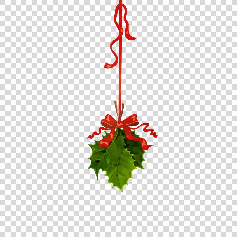 Christmas Ornament, Christmas Ornament Holly PNG