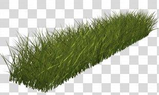 Grass Green Lawn Clip Art - Grass PNG