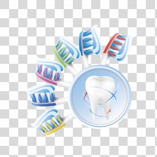 Human Tooth Euclidean Vector Teeth Cleaning - Toothbrush And Teeth PNG