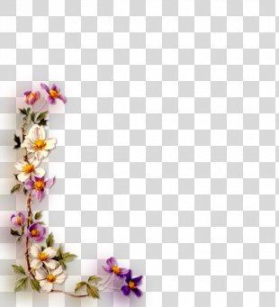 Floral Design Artificial Flower Picture Frames Film Frame - Flower PNG