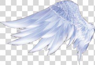 Angel Wings Angel Wings Feather - Wings PNG