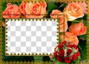 Flower Picture Frames Film Frame Clip Art - Abstract Floral Frame PNG