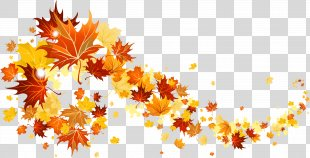 Autumn Leaf Color Clip Art - Fall Leaves Transparent Picture PNG